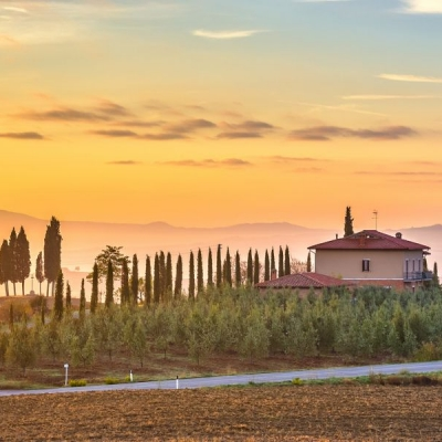 chianti wine tour (18)